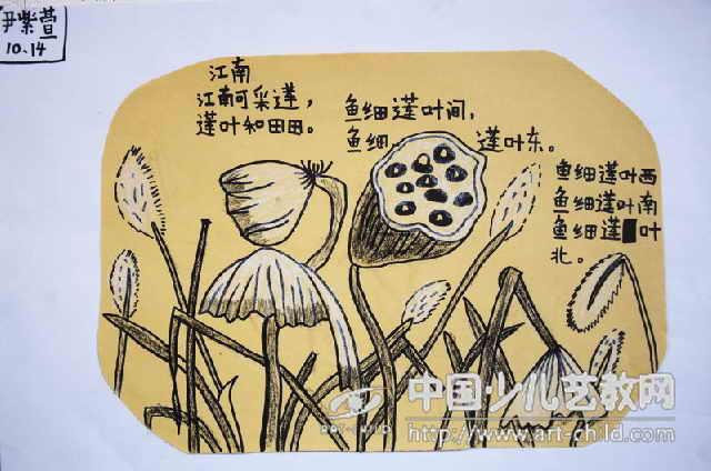 儿童画——喜爱的荷 儿童画 喜爱的荷 第9张